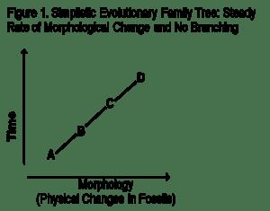 Figure 1-Evol Lineage