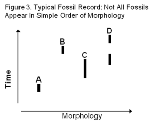 Figure 3-Evol Lineage