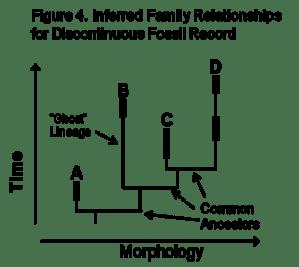Figure 4-Evol Lineage