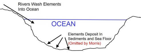 Elements In Out Ocean Fig
