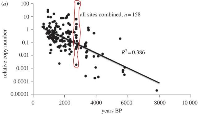 "Residual DNA in fossil moa leg bones  [ ""The half-life of DNA in bone: measuring decay kinetics in 158 dated fossils"", Morten E. Allentoft, et al.    Proc. R. Soc. B (2012) 279, 4724–4733]."